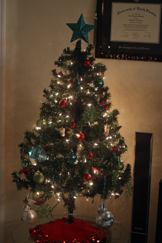 Our Christmas Tree - Some Shananagins
