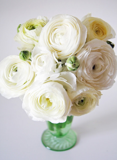 White Ranunculus-Spring Wedding Flowers