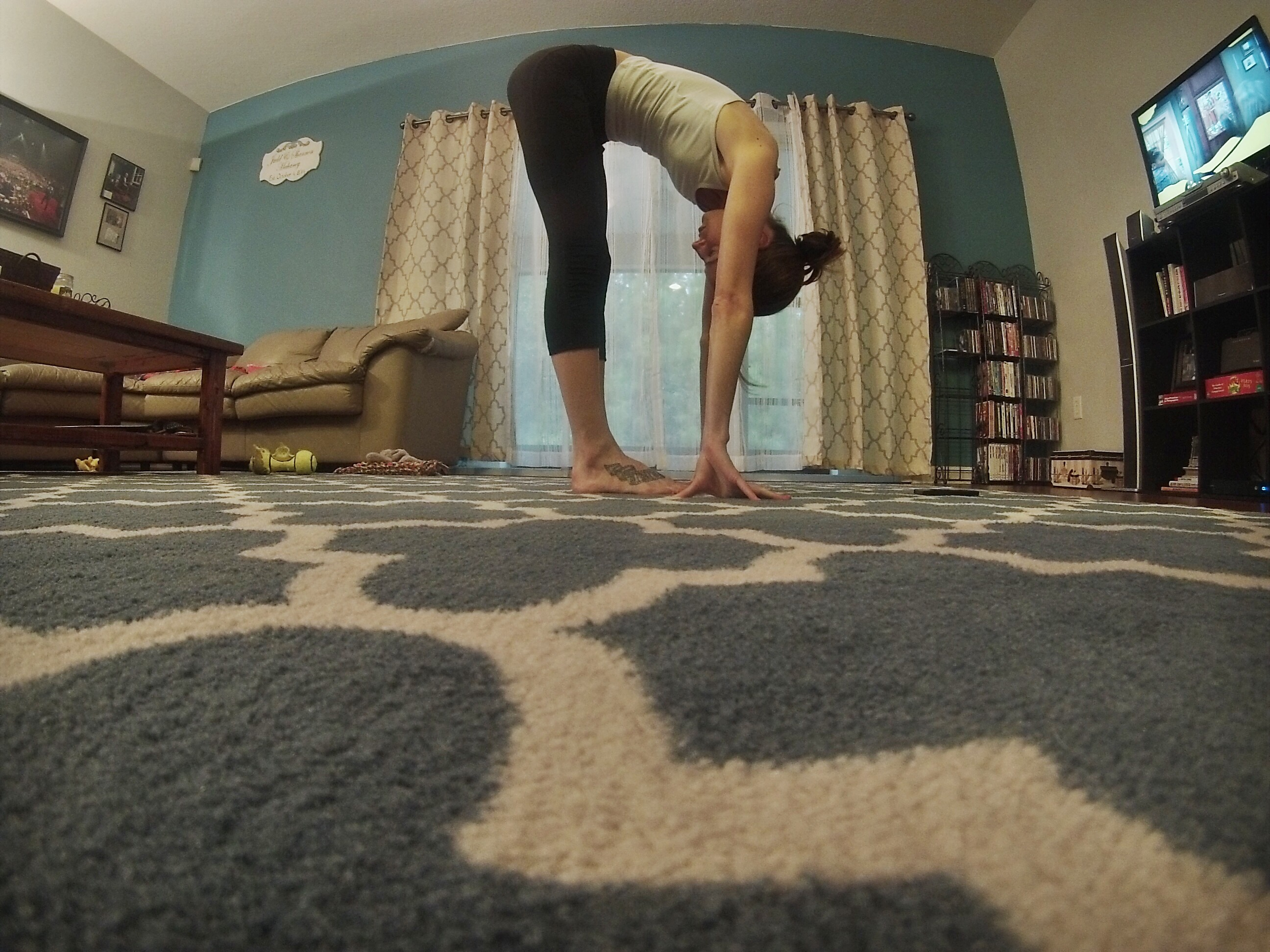 Standing Foward Fold Pose - Some Shananagins