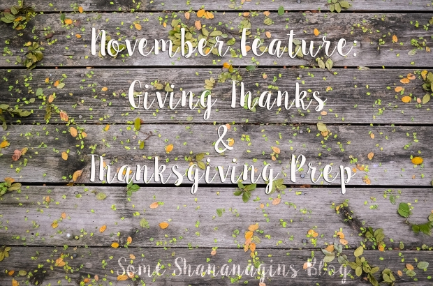 November Feature 2015 - Some Shananagins