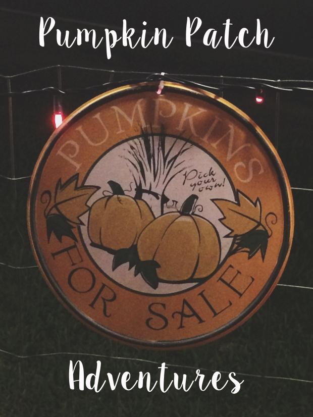 pumpkinpatchadventures