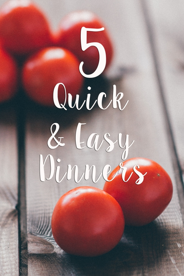 5 Quick & Easy Dinners - Some Shananagins