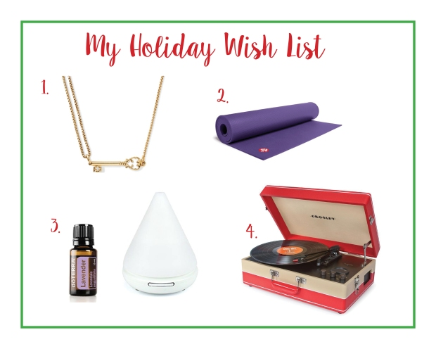 My Holiday Wish List - Some Shananagins